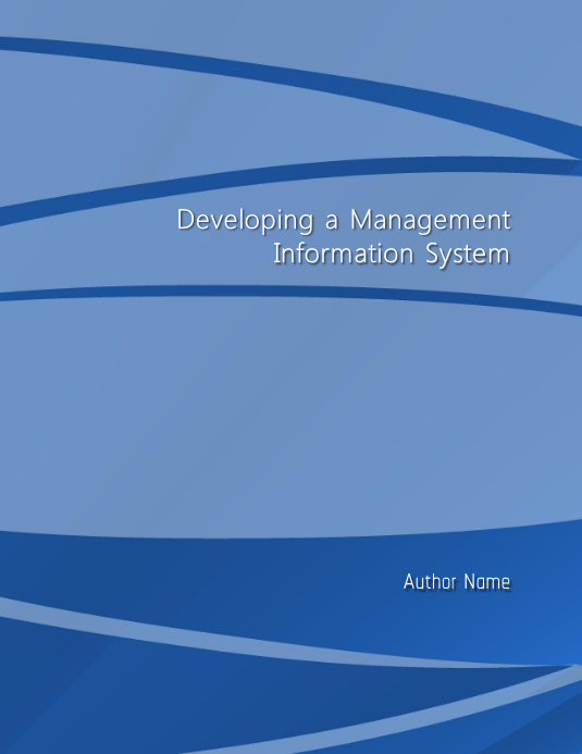 Developing a Management Information System
