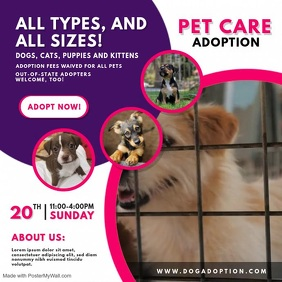 Dog Adoption Service Video Ad