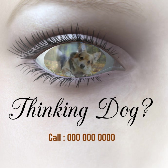 dog awareness