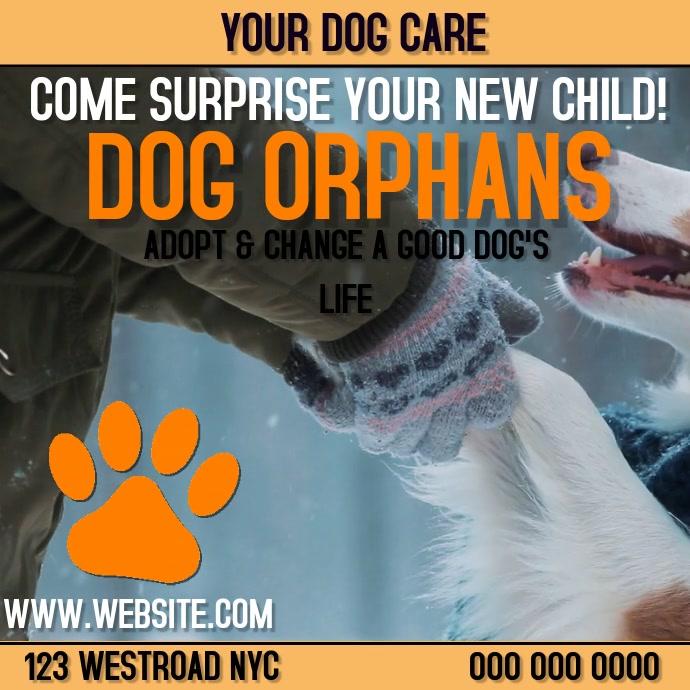 DOG CARE ORPHANAGE AD DIGITAL VIDEO
