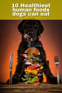 Dog food Gráfico de Pinterest template