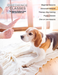 dog training obedience classes flyer