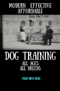 Dog Training Video Advertising