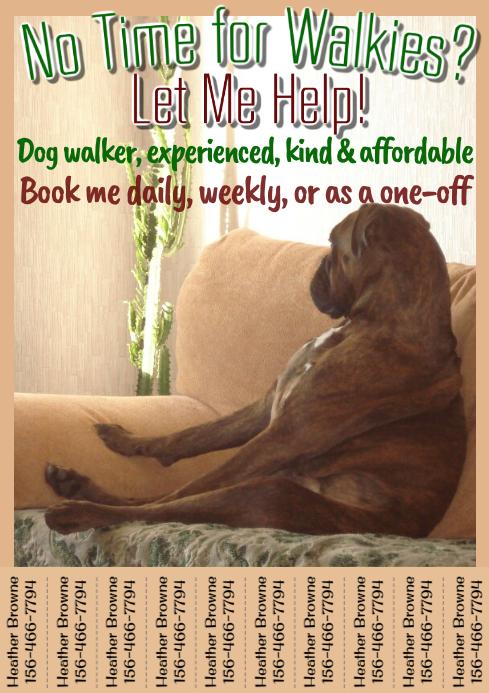Dog Walker Flyer Tabbed Template