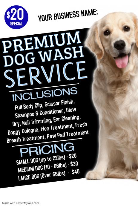 Dog Wash Poster
