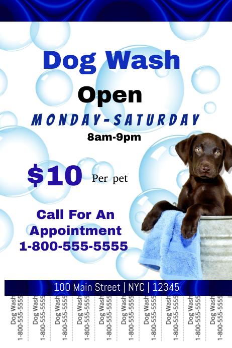 Dog wash 海报 template