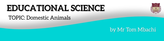 Educational science banner template