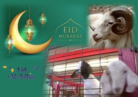 EIDUZZUHA TEMPLATE FLYER Postcard