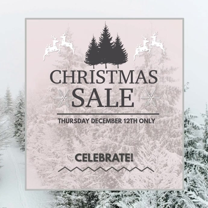 Elegant Winter Christmas Sale Video template