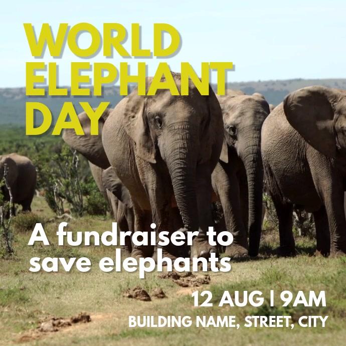 Elephant awareness Day