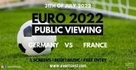 EM Euro 2020 Soccer Public Viewing Live Watch