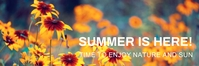 Email header,event,summer template
