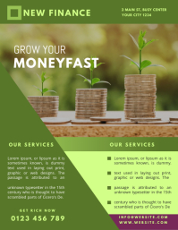 FINANCE COMPANY FLYER