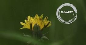 Flower shop Facebook Gedeelde Prent template
