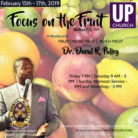 Focus on the Fruit Flyer