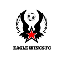 Football Logo Logótipo template