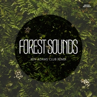 Forest Album CD Cover Design Template