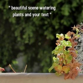 garden watering plants SOCIAL MEDIA post
