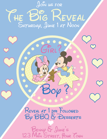 Gender Reveal Baby Mickie and Minnie 2