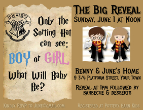 Gender Reveal Harry Potter