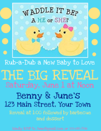 Gender Reveal Party Invitation Boy or Girl