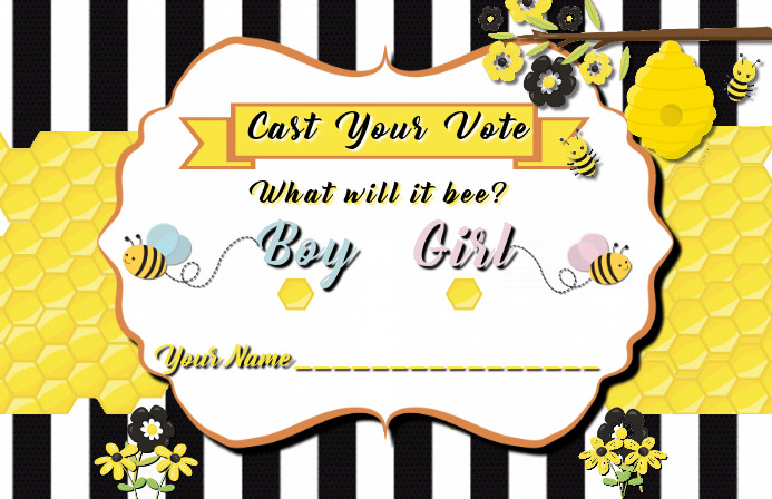 GENDER REVEAL VOTERS BALLOT