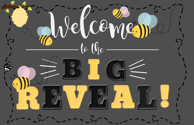 GENDER REVEAL WELCOME SIGN