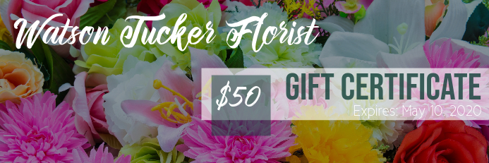 Gift Certificate Banner 2 x 6 fod template