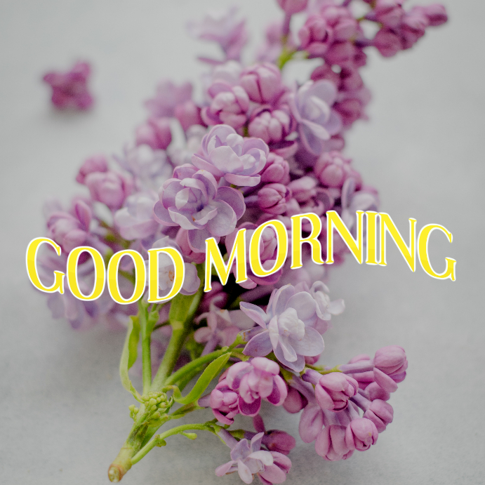 GOOD MORNING -INSTAGRAM POST Template | PosterMyWall