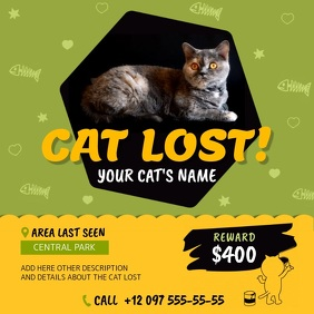 Green and Yellow Missing Cat Square Video template