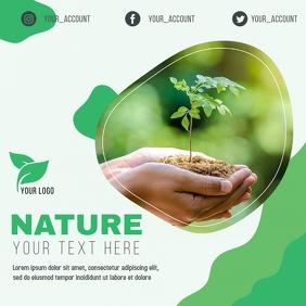 Green Flyer Environment