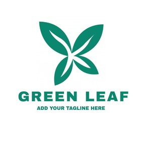 Green leaf eco logo template