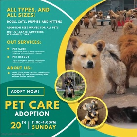 Green Pet Adoption Service Video Ad 方形(1:1) template