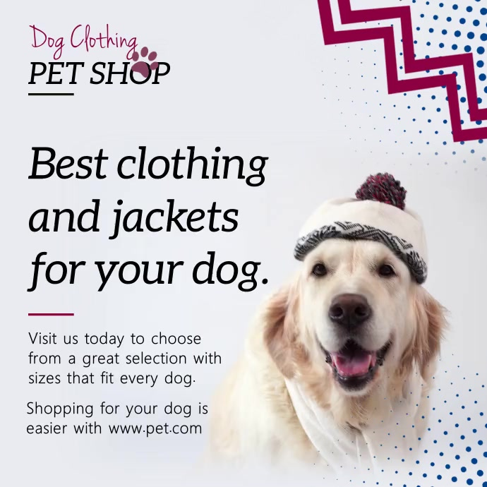 Grey dog clothing boutique Instagram video Square (1:1) template