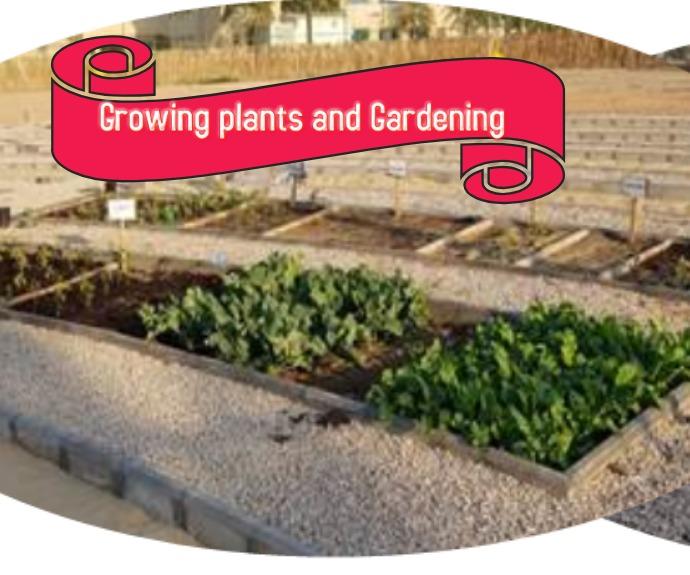 Growing plants and Gardening Persegi Panjang Sedang template