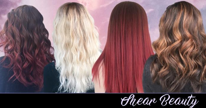 Hair cover photo delt Facebook-billede template