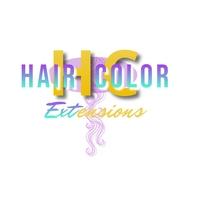 Hair Extensions Logo Logotyp template