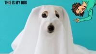 HALLOWEEN DOG Digitalanzeige (16:9) template