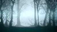 halloween flyer YouTube 缩略图 template