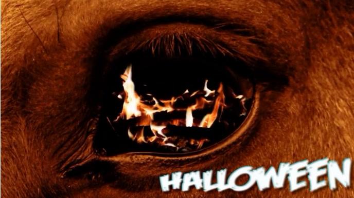 Halloween Horse Digital na Display (16:9) template