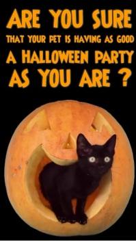Halloween Pet Care Digital Display Vertical template