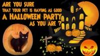 Halloween Pet Care Digital Display video template