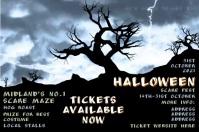 Halloween storm Poster template