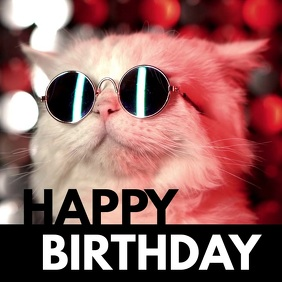Happy Birthday Cool Cat Sunglasses Funny Wish