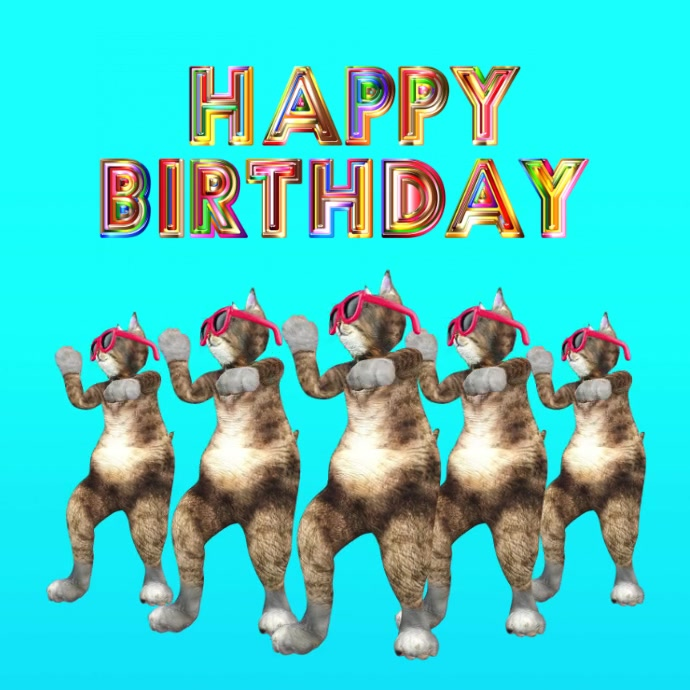Happy Birthday Funny Cats Dancing Video Wish Template Postermywall