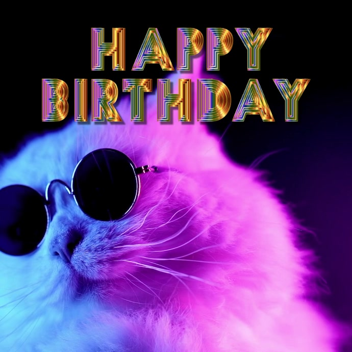 Happy Birthday Funny Video Cat Sunglasses