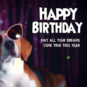 Happy Birthday Greetings Wishes Funny Dog