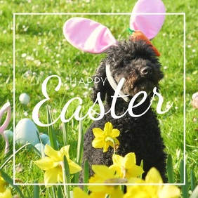 Happy Easter dog Bunny ears Funny Card