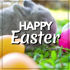 Happy Easter Greeting Video Card Wishes Bunny Eggs flowers