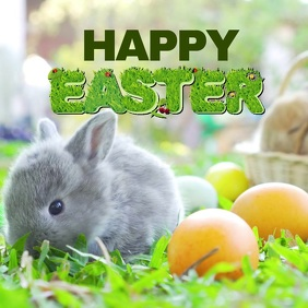 Happy Easter Video Greeting Card Bunny Square Instagram Post template